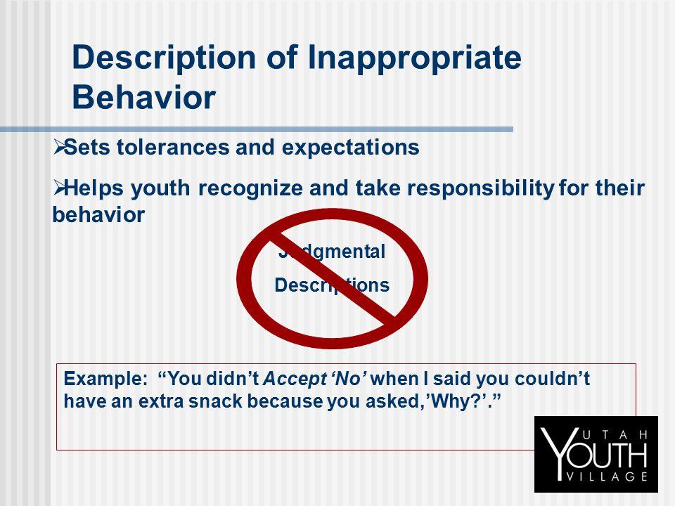 Description of Inappropriate Behavior