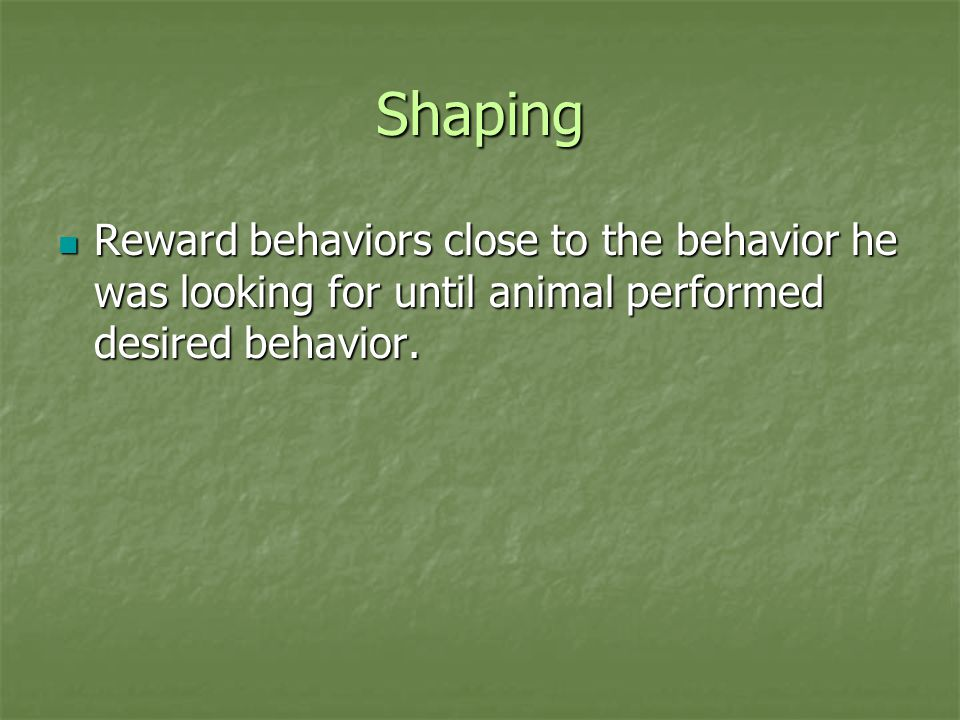 Shaping Reward behaviors close to the behavior he was looking for until animal performed desired behavior.
