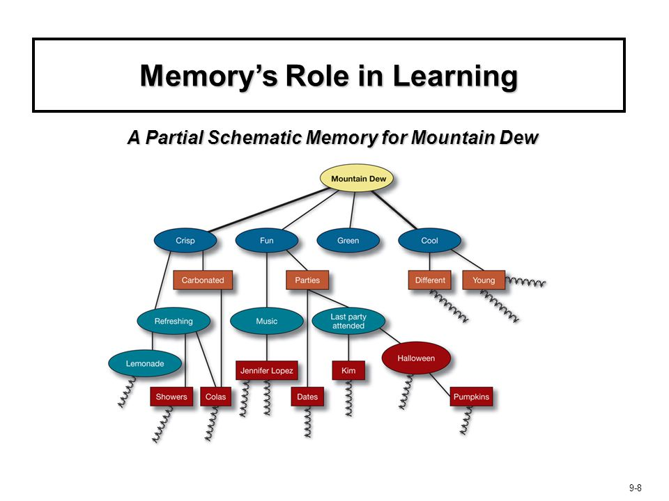 Memory's Role in Learning