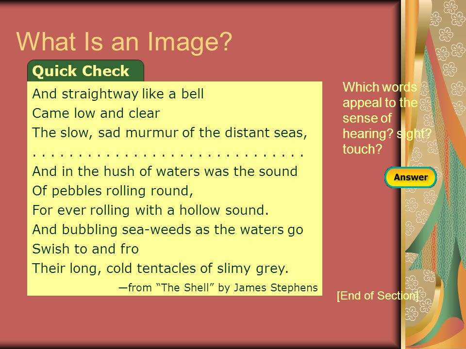 What Is an Image Quick Check