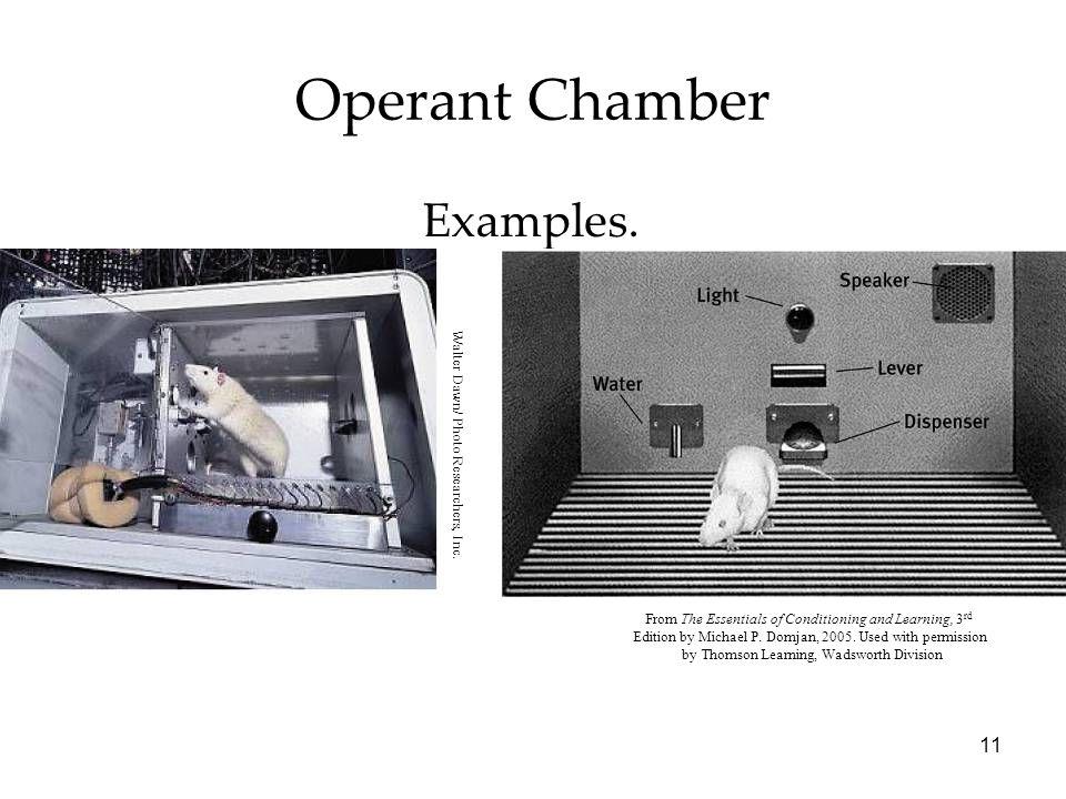 Operant Chamber Examples. Module 19 edit 10 20 11
