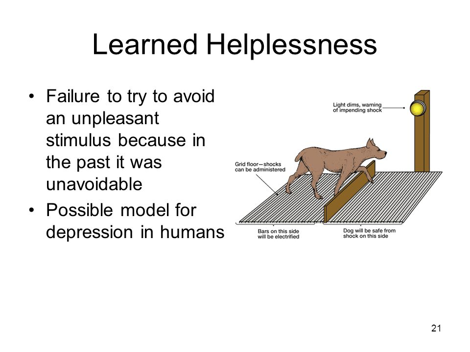 Learned Helplessness Failure to try to avoid an unpleasant stimulus because in the past it was unavoidable.