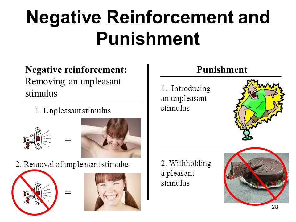 Operant Conditioning Module ppt video online download