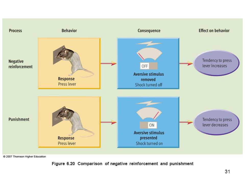 Figure 6.20 Comparison of negative reinforcement and punishment