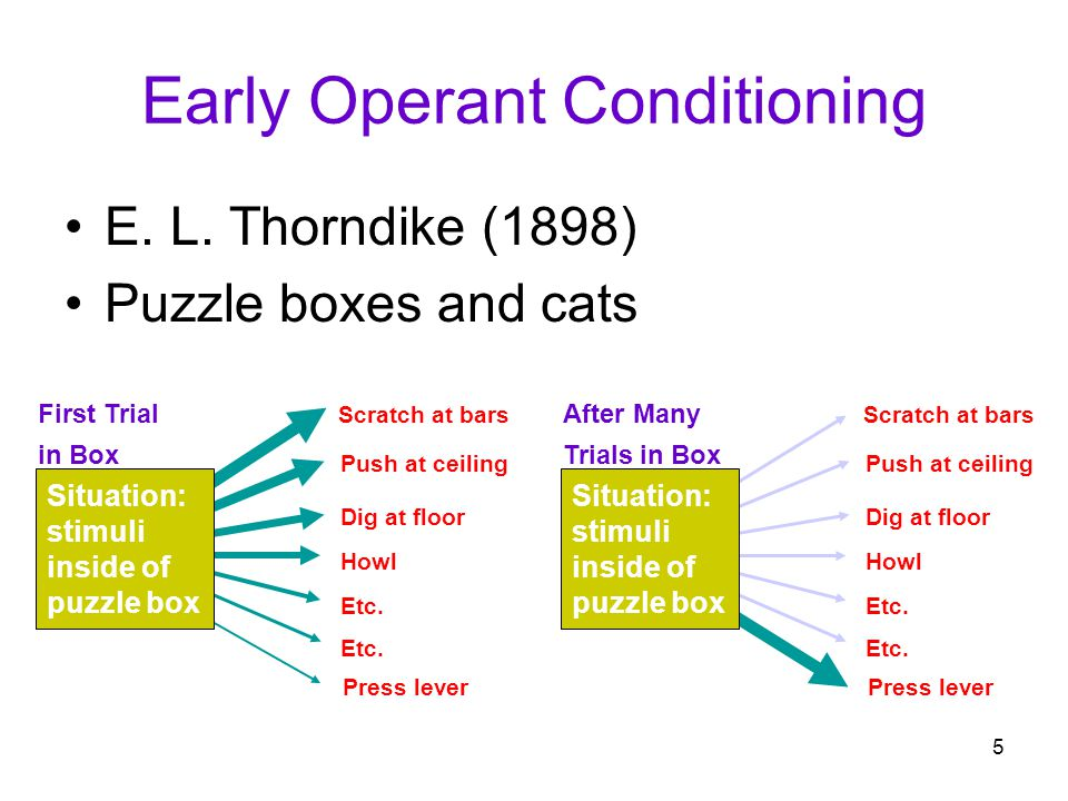 Early Operant Conditioning