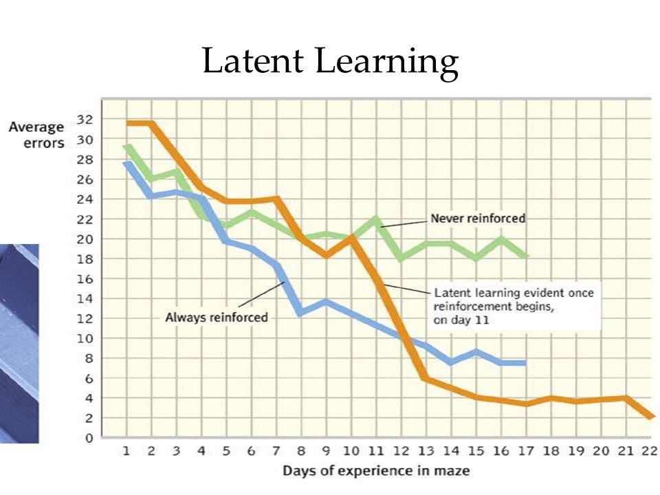 Latent Learning Latent learning
