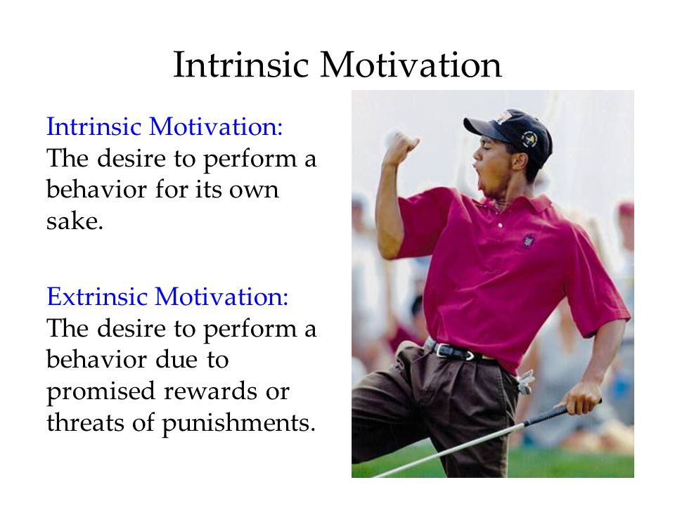 Intrinsic Motivation Intrinsic Motivation: The desire to perform a behavior for its own sake.