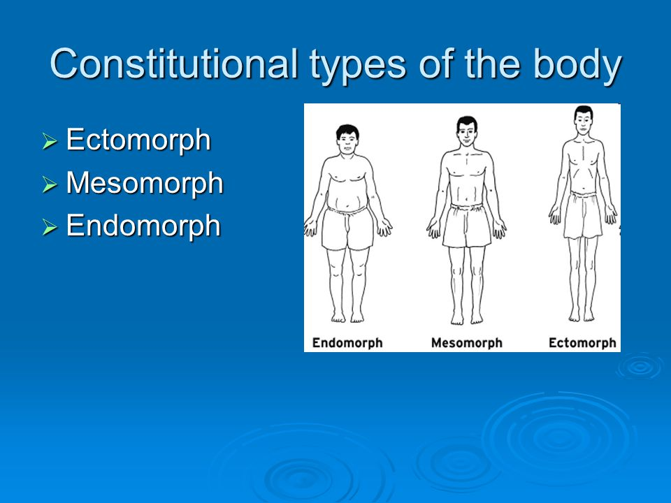 Constitutional types of the body