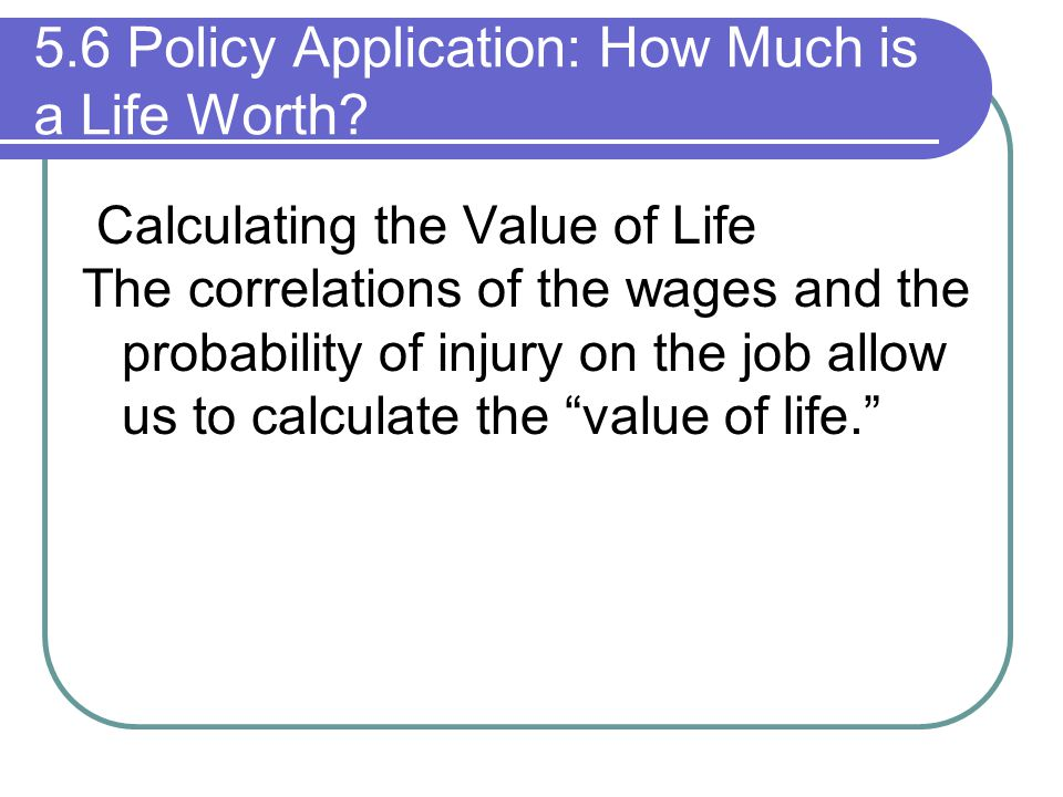 5.6 Policy Application: How Much is a Life Worth