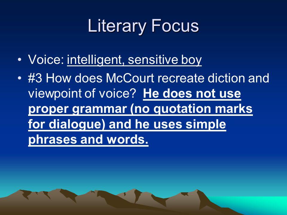 Literary Focus Voice: intelligent, sensitive boy