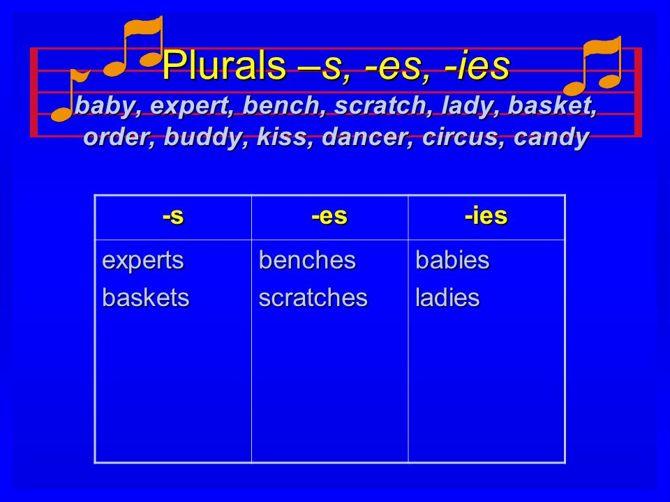 Plurals –s, -es, -ies baby, expert, bench, scratch, lady, basket, order, buddy, kiss, dancer, circus, candy