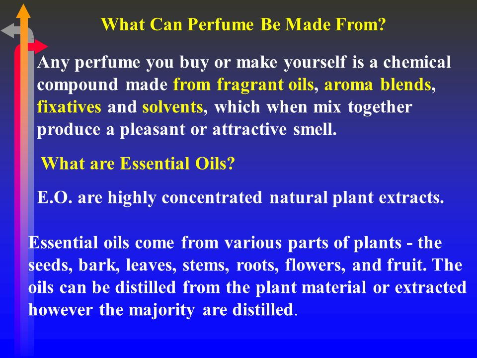 What Can Perfume Be Made From