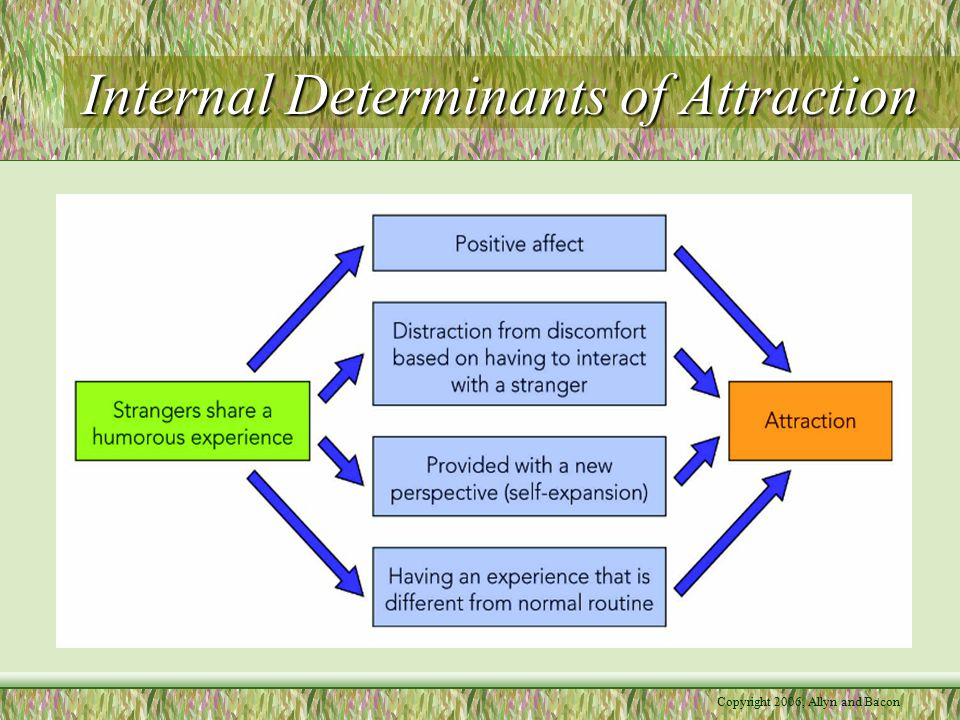 Internal Determinants of Attraction