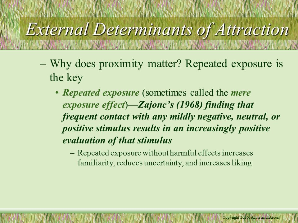 External Determinants of Attraction