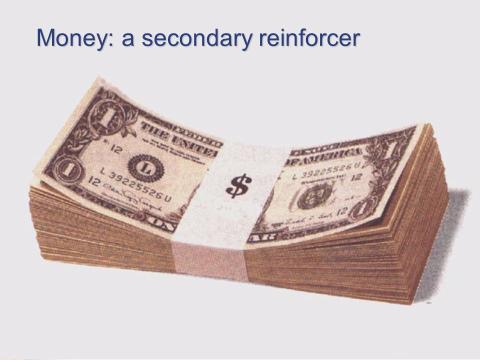Money: a secondary reinforcer