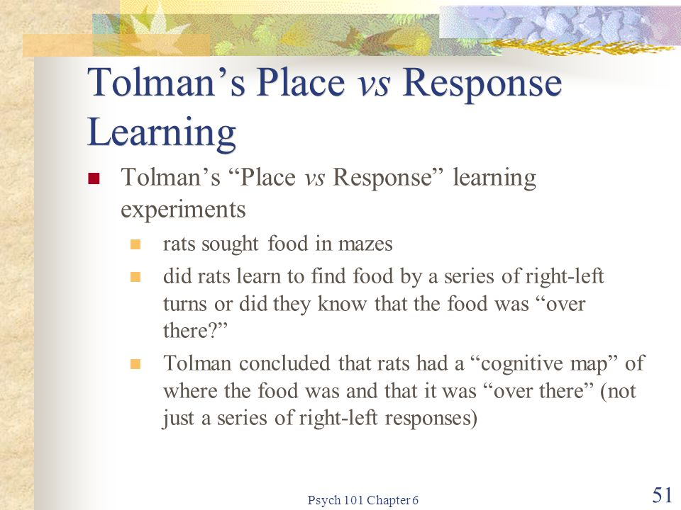 Tolman's Place vs Response Learning