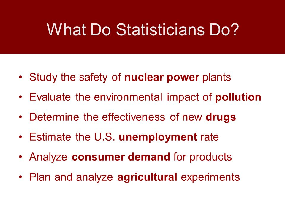 What Do Statisticians Do