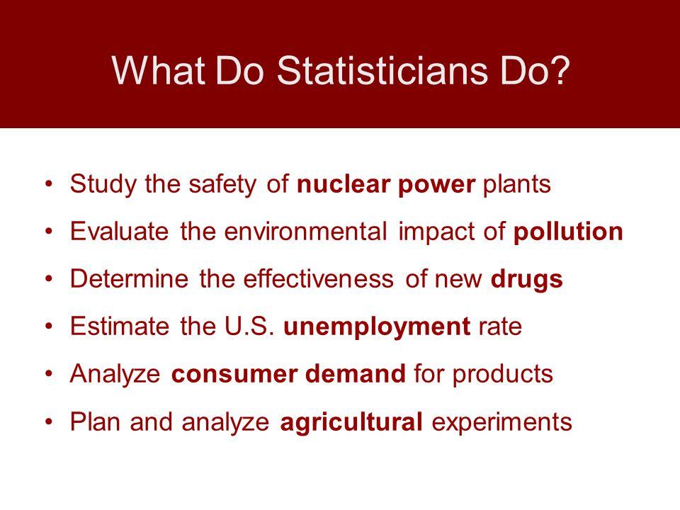 What Do Statisticians Do