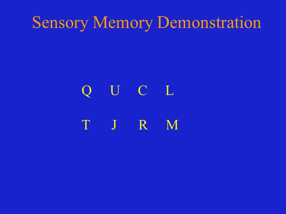 Sensory Memory Demonstration