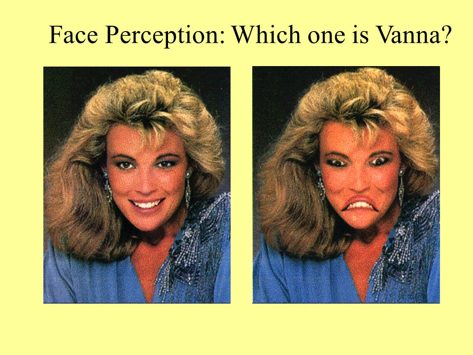 Face Perception: Which one is Vanna
