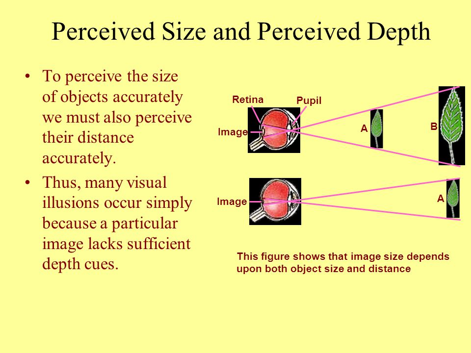 Perceived Size and Perceived Depth