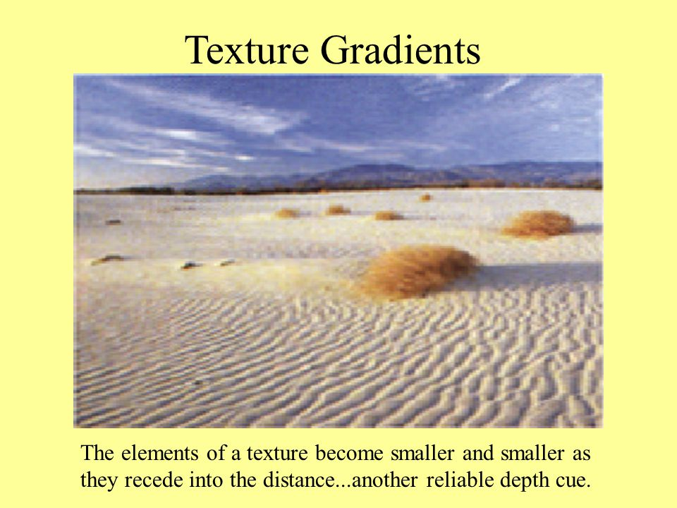 Texture Gradients The elements of a texture become smaller and smaller as they recede into the distance...another reliable depth cue.