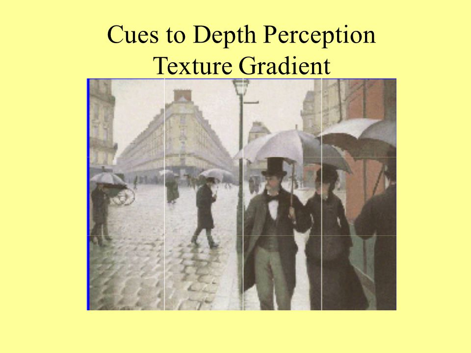 Cues to Depth Perception
