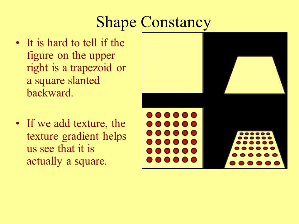 Shape Constancy It is hard to tell if the figure on the upper right is a trapezoid or a square slanted backward.