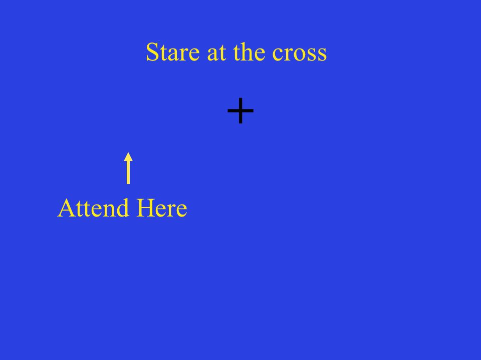 Stare at the cross + Attend Here