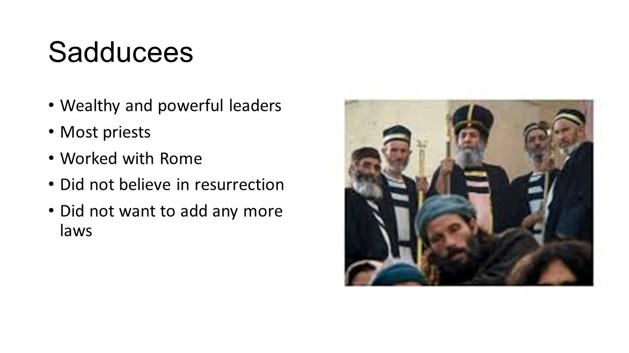 Sadducees Wealthy and powerful leaders Most priests Worked with Rome