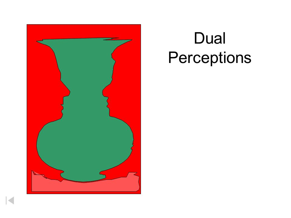 Dual Perceptions Your experience of learning chemistry maybe somewhat like looking at this picture that tests your perspective.