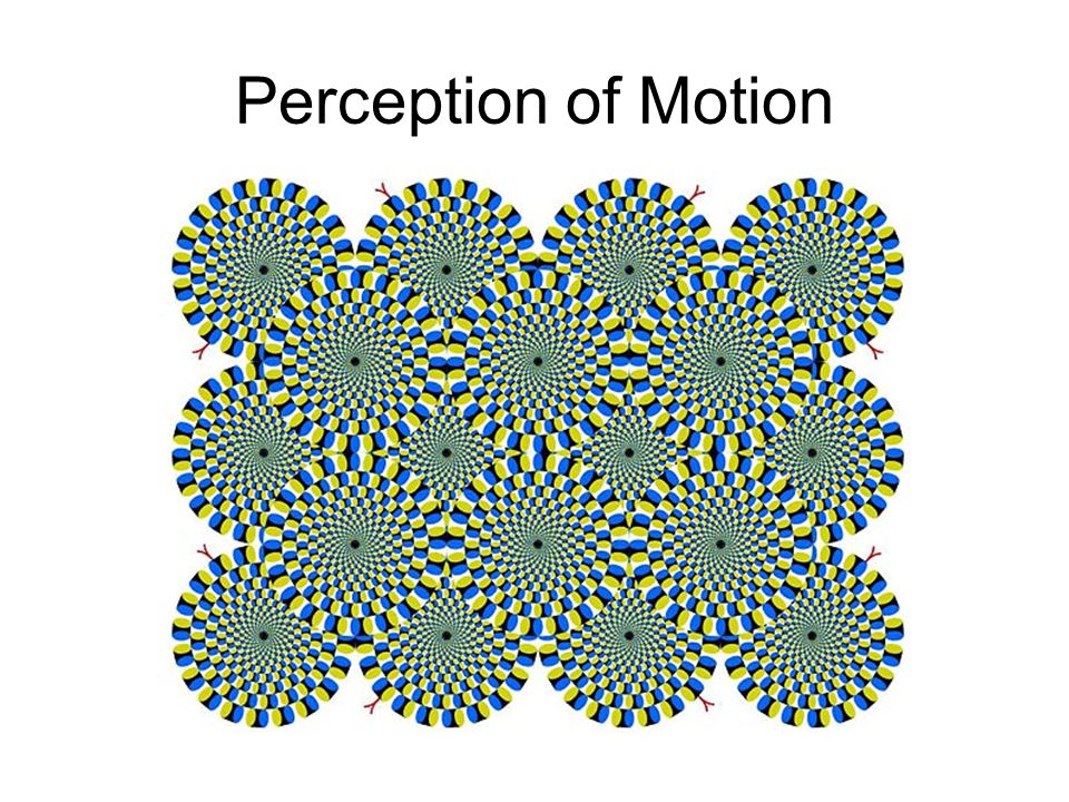 Perception of Motion http://www.sapdesignguild.org/resources/optical_illusions/images/motion_sm.jpg.