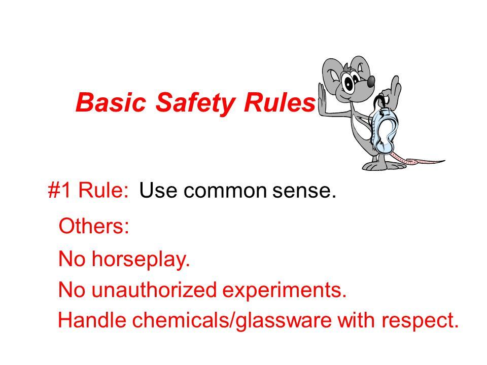 Basic Safety Rules #1 Rule: Use common sense. Others: No horseplay.