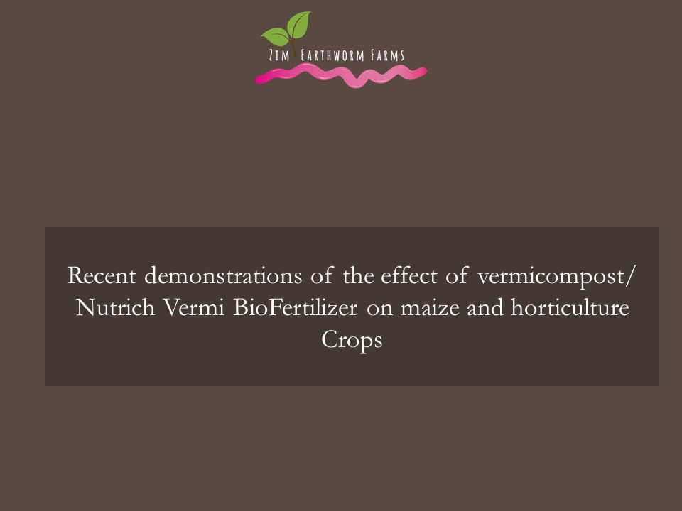 Recent demonstrations of the effect of vermicompost/ Nutrich Vermi BioFertilizer on maize and horticulture Crops