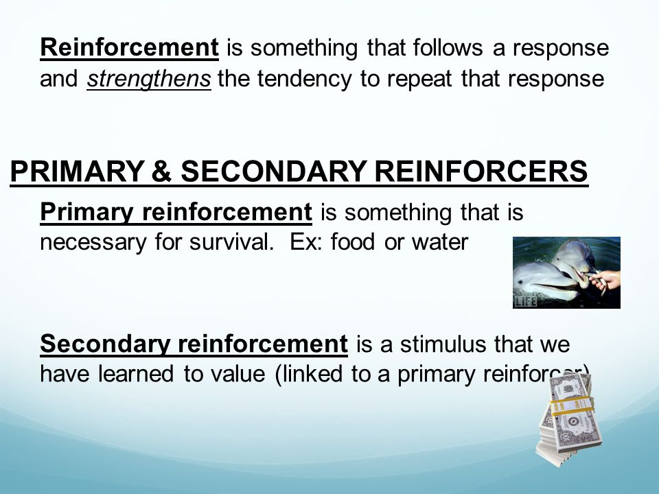 PRIMARY & SECONDARY REINFORCERS