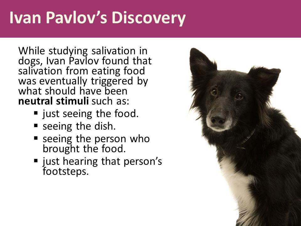 Ivan Pavlov's Discovery