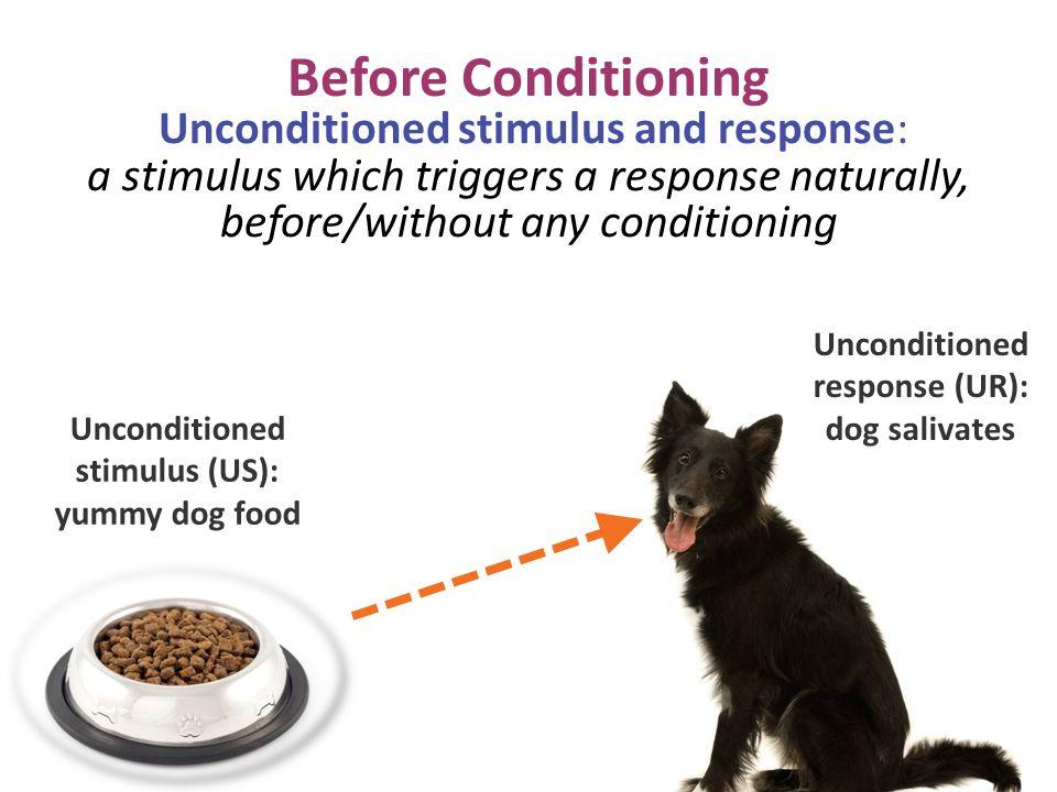 Unconditioned response (UR): stimulus (US): yummy dog food