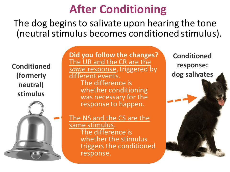Conditioned response: Conditioned (formerly neutral)