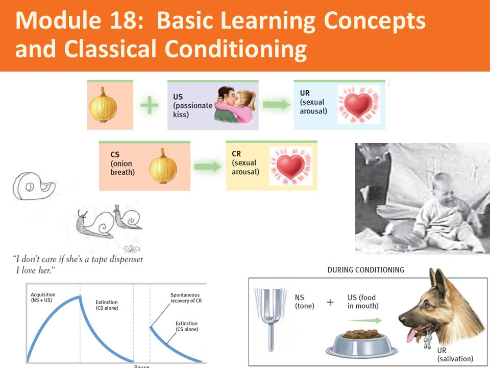 Module 18: Basic Learning Concepts and Classical Conditioning