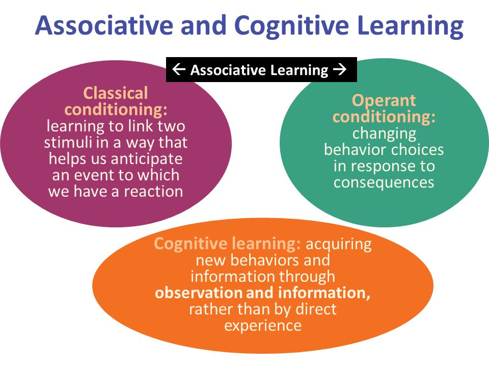 Associative and Cognitive Learning