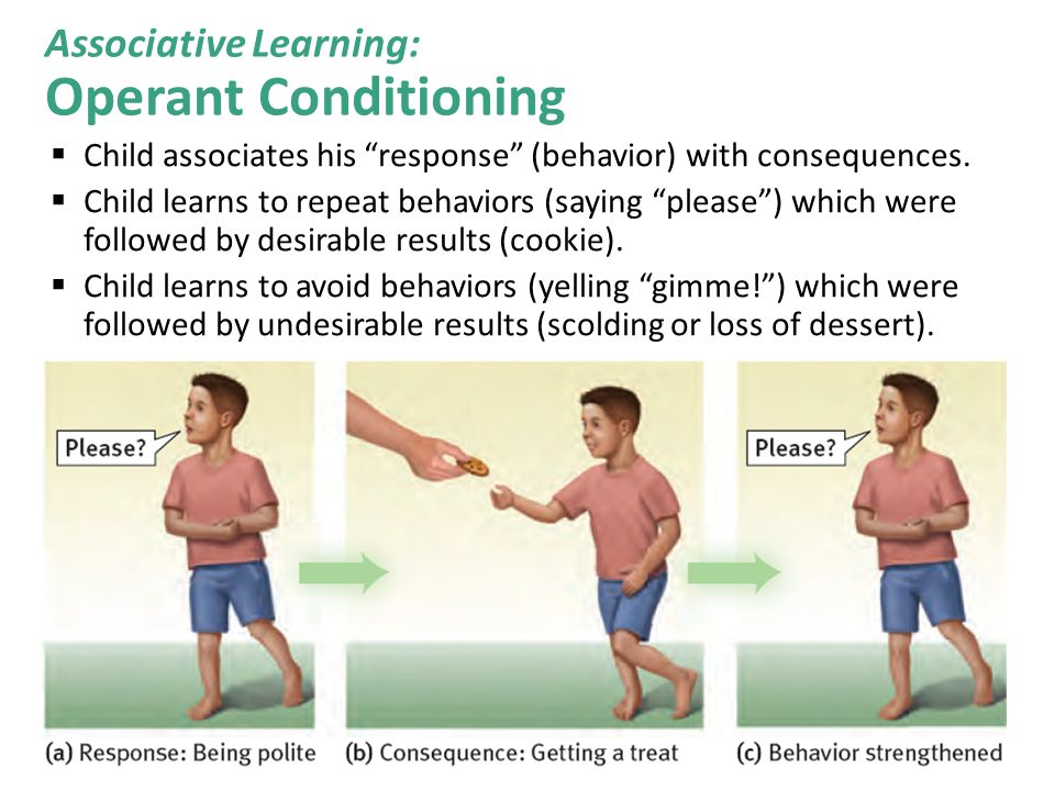 Associative Learning: Operant Conditioning