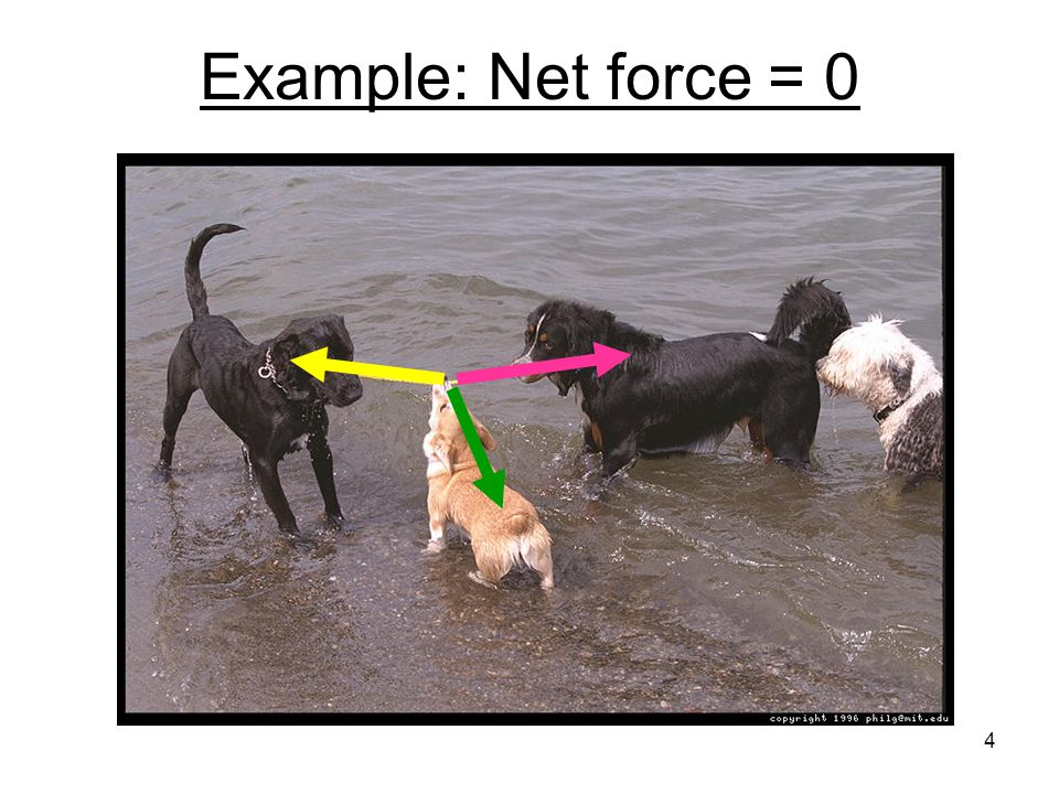 Example: Net force = 0