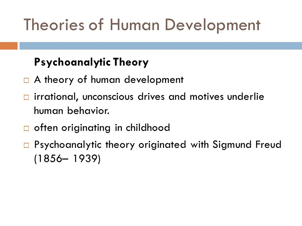 Theories Of Human Development By Sigmund Freud