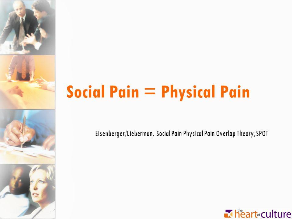 Social Pain = Physical Pain