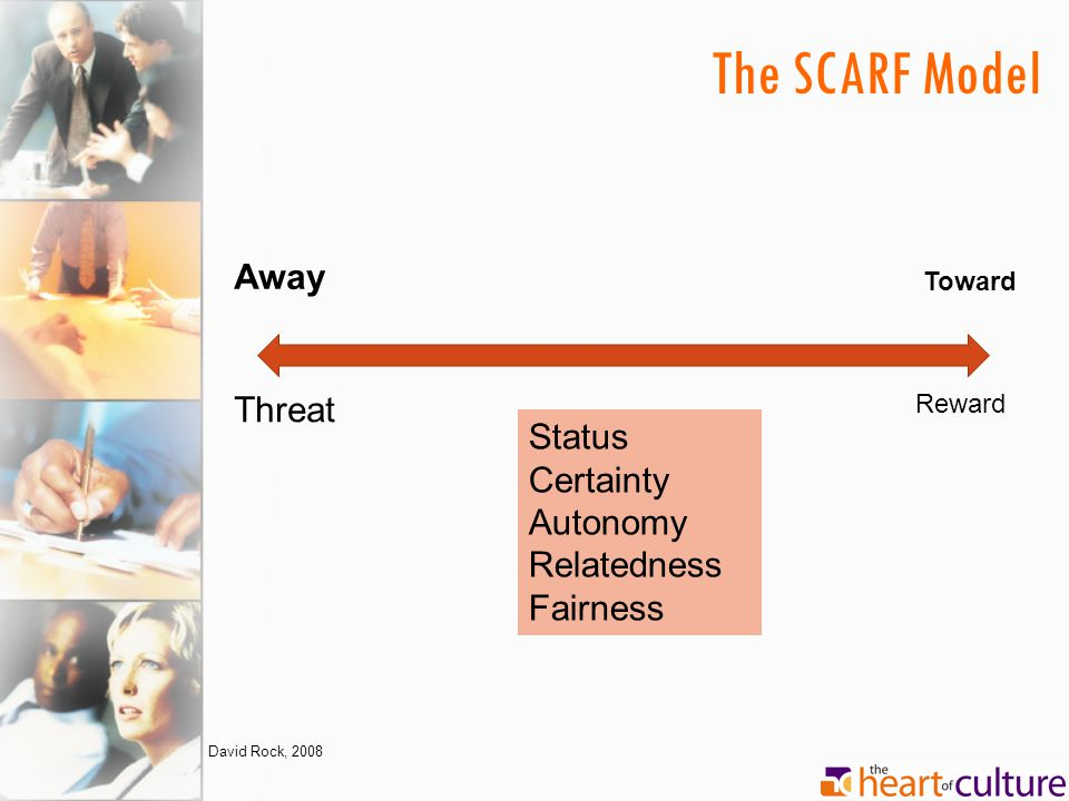 The SCARF Model Away Threat Status Certainty Autonomy Relatedness
