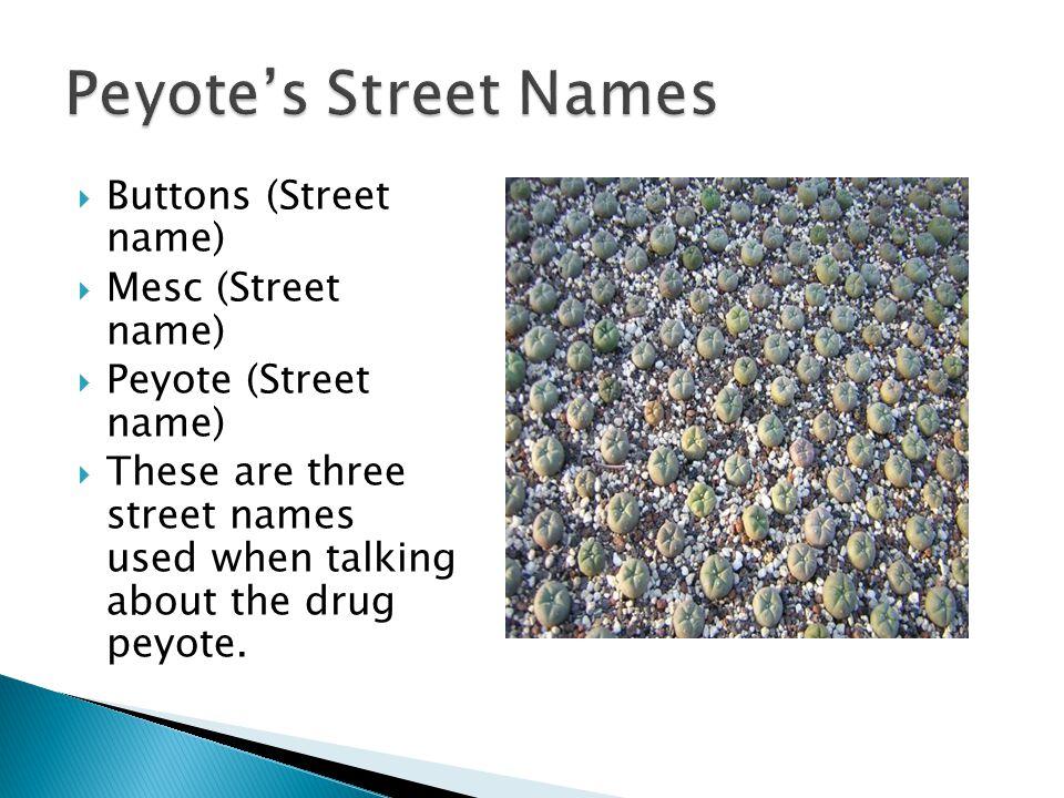 Peyote's Street Names Buttons (Street name) Mesc (Street name)
