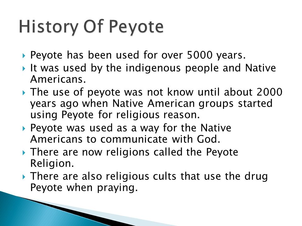 History Of Peyote Peyote has been used for over 5000 years.