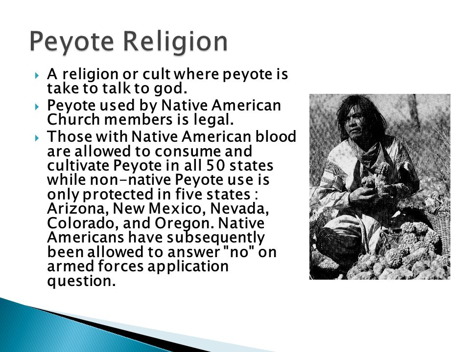 Peyote Religion A religion or cult where peyote is take to talk to god. Peyote used by Native American Church members is legal.