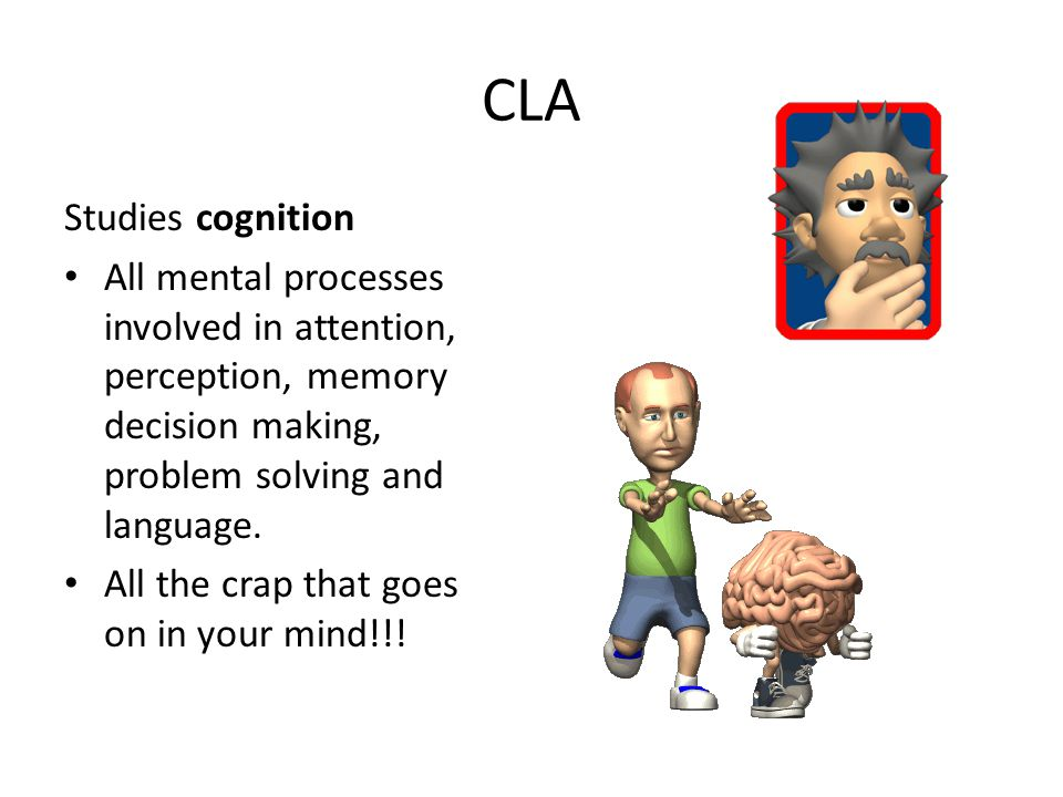 CLA Studies cognition. All mental processes involved in attention, perception, memory decision making, problem solving and language.