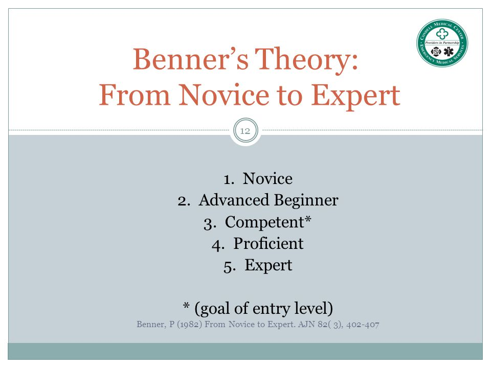 Benner's Theory: From Novice to Expert